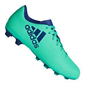 adidas-x-17-4-fxg-j-kids-gruen-blau-fussball-sport-match-training-geschwindigkeit-komfort-neuheit-cp9014.jpg