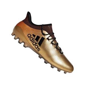 adidas-x-17-1-ag-gold-multinockenschuh-fussballschuh-kickschuh-neuheit-herrenschuh-cp9168.jpg