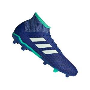 adidas-predator-18-2-fg-blau-gruen-fussballschuhe-footballboots-naturrasen-firm-ground-nocken-soccer-cp9293.jpg