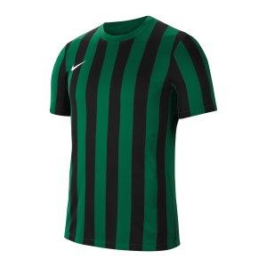 nike-division-iv-striped-trikot-kurzarm-gruen-f302-cw3813-teamsport_front.png