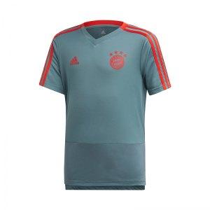 adidas-fc-bayern-muenchen-training-shirt-kids-gruen-replicas-fanartikel-fanshop-t-shirts-national-cw7266.jpg