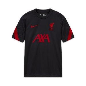nike-fc-liverpool-strike-t-shirt-kids-grau-f060-cz2749-fan-shop_front.png