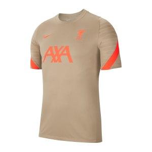 nike-fc-liverpool-strike-t-shirt-beige-f392-db0268-fan-shop_front.png