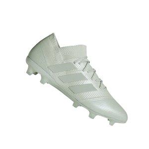 adidas-nemeziz-18-1-fg-silber-db2081-fussball-schuhe-nocken-natturrasen-kunstrasen-neuheit-sport.png