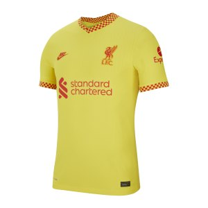 nike-fc-liverpool-auth-trikot-3rd-21-22-f704-db5889-fan-shop_front.png