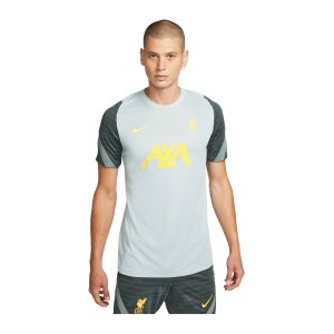 nike-fc-liverpool-strike-trainingsshirt-grau-f017-db6917-fan-shop_front.png