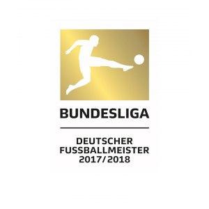 dfl-badge-offizielles-meister-logo-fuer-erste-bundesliga-2018-2019.png