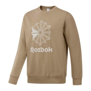 reebok-classics-big-starcrest-sweatshirt-lifestyle-textilien-sweatshirts-dm5158-pullover-bekleidung-textilien-oberteil.jpg