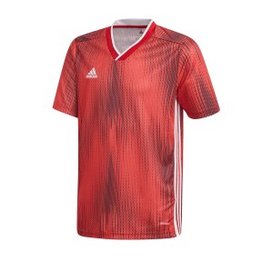 adidas-tiro-19-trikot-kurzarm-kids-rot-weiss-fussball-teamsport-textil-trikots-dp3178.jpg