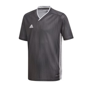 adidas-tiro-19-trikot-kurzarm-kids-grau-weiss-fussball-teamsport-textil-trikots-dp3181.png