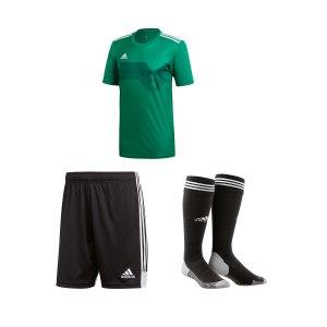 adidas-campeon-19-trikotset-greun-weiss-dp6811.png