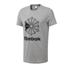 reebok-classics-big-logo-tee-t-shirt-tee-grau-lifestyle-freizeit-strasse-textilien-t-shirt-tees-dt8170.jpg