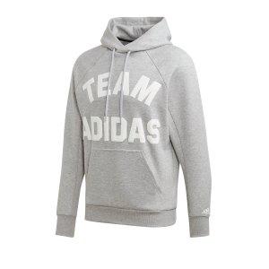 adidas-vrct-hoody-kapuzensweatshirt-grau-fussball-textilien-sweatshirts-dx7957.png