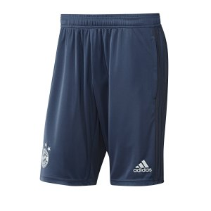 adidas-fc-bayern-muenchen-trainingsshort-blau-replicas-shorts-national-dx9163.jpg