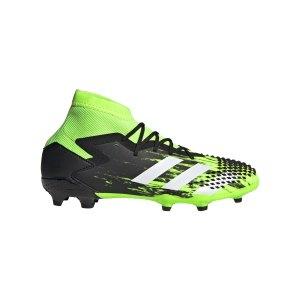 adidas-predator-20-1-fg-j-kids-gruen-weiss-eh3017-fussballschuh_right_out.png