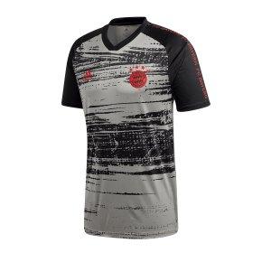 adidas-fc-bayern-muenchen-prematch-shirt-grau-replicas-t-shirts-national-fi6228.png