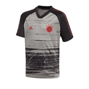 adidas-fc-bayern-muenchen-prematch-shirt-kids-grau-replicas-t-shirts-national-fi6230.png