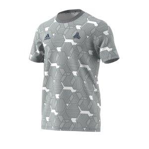 adidas-tango-aop-t-shirt-grau-weiss-fussball-textilien-t-shirts-fm0802.png