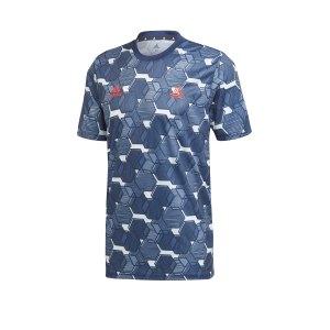adidas-tango-aop-t-shirt-blau-weiss-fussball-textilien-t-shirts-fp7893.png