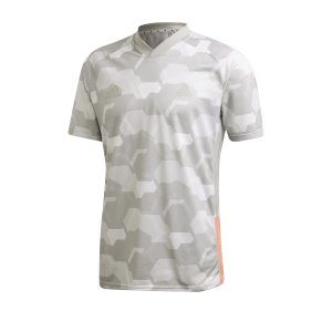 adidas-tango-trainingsshirt-kurzarm-grau-fussball-textilien-t-shirts-fp7914.png