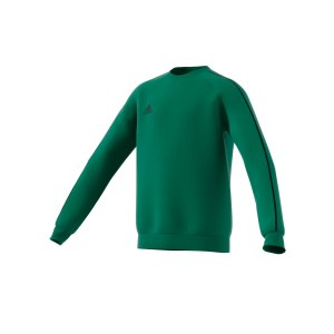 adidas-core-18-sweat-top-kids-gruen-fussball-teamsport-textil-sweatshirts-fs1900.png