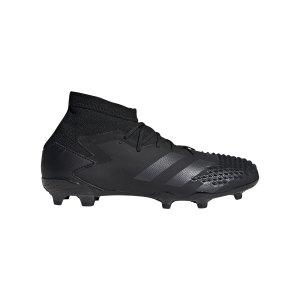 adidas-predator-20-1-fg-j-kids-schwarz-fu6860-fussballschuh_right_out.png