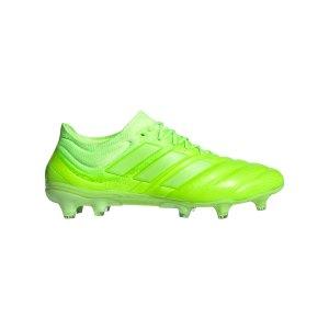 adidas-copa-20-1-fg-gruen-fussball-schuhe-nocken-fv3627.png