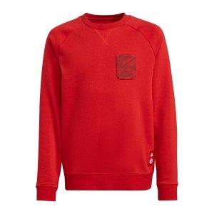 adidas-fc-bayern-muenchen-crew-sweatshirt-kids-rot-gr0679-fan-shop_front.png