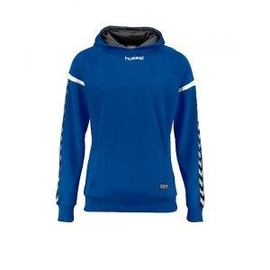 hummel-authentic-charge-kapuzensweat-kids-f7045-teamsport-mannschaft-sport-ausstattung-133403.png