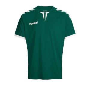 hummel-core-trikot-kurzarm-gruen-f6141-fussball-teamsport-textil-trikots-3636.png