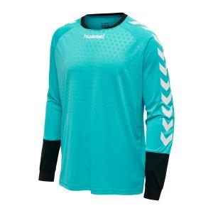 hummel-essential-torwarttrikot-kids-blau-f7905-104087-teamsport_front.png