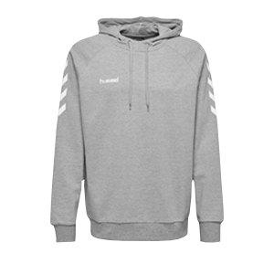 hummel-go-cotton-hoody-kapuzenpullover-f2006-fussball-teamsport-textil-sweatshirts-203508.png