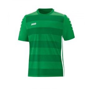 jako-celtic-2-0-trikot-kurzarm-f06-teamsport-mannschaft-bekleidung-textilien-fussball-4205.png