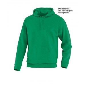 jako-team-kapuzensweatshirt-hoody-sweatshirt-pullover-teamsport-freizeit-kids-f06-gruen-6733.png