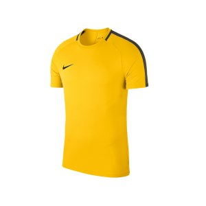nike-academy-18-football-top-t-shirt-gelb-f719-shirt-oberteil-trainingsshirt-fussball-mannschaftssport-ballsportart-893693.png