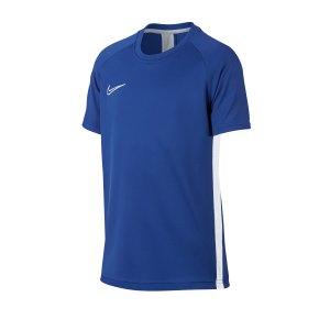 nike-academy-dri-fit-top-t-shirt-kids-blau-f480-fussball-textilien-t-shirts-ao0739.png