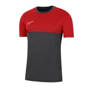 nike-academy-pro-t-shirt-shirt-grau-f078-bv6926-fussballtextilien.png