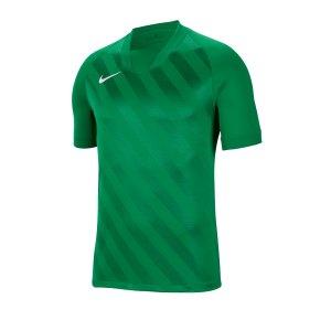nike-challenge-iii-trikot-kurzarm-gruen-f302-fussball-teamsport-textil-trikots-bv6703.png