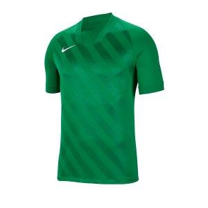 nike-challenge-iii-trikot-kurzarm-kids-f302-fussball-teamsport-textil-trikots-bv6738.png