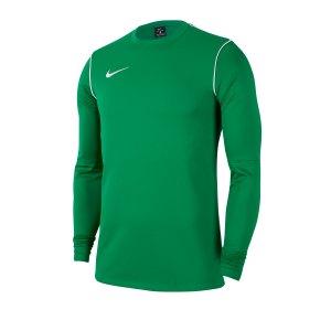 nike-dri-fit-park-shirt-longsleeve-gruen-f302-fussball-teamsport-textil-sweatshirts-bv6875.png