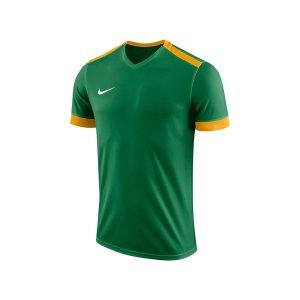 nike-dry-park-derby-ii-trikot-gruen-gold-f302-trikot-shirt-team-mannschaftssport-ballsportart-894312.png
