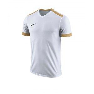 nike-dry-park-derby-ii-trikot-kids-f100-trikot-shirt-team-mannschaftssport-ballsportart-894116.png
