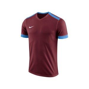 nike-dry-park-derby-ii-trikot-kids-f677-trikot-shirt-team-mannschaftssport-ballsportart-894116.png