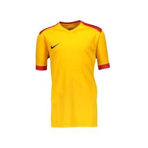 nike-dry-park-derby-ii-trikot-kids-f739-trikot-shirt-team-mannschaftssport-ballsportart-894116.png