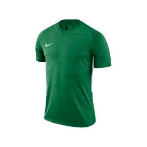 nike-dry-tiempo-t-shirt-gruen-weiss-f302-shirt-funktionsmaterial-teamsport-mannschaftssport-ballsportart-894230.png