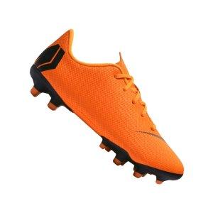 nike-mercurial-vapor-xii-academy-mg-kids-f810-ah7349-fussball-schuhe-kinder-nocken-neuhet-sport-football-shoe.png