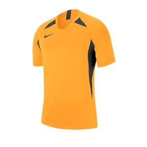 nike-striker-v-trikot-kurzarm-gold-f739-fussball-teamsport-textil-trikots-aj0998.png