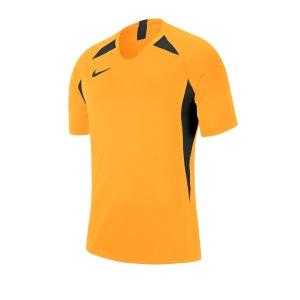 nike-striker-v-trikot-kurzarm-kids-gold-f739-fussball-teamsport-textil-trikots-aj1010.png