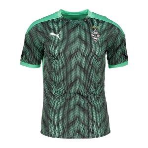 puma-borussia-moenchengladbach-stadium-t-shirt-f03-757975-fan-shop_front.png