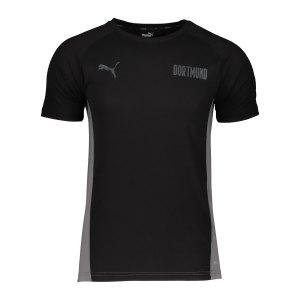 puma-bvb-dortmund-evostripe-t-shirt-schwarz-f03-758573-fan-shop_front.png